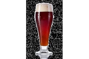 Пиво «Львов Дункель»