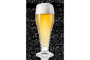 Пиво Златобир Платинум